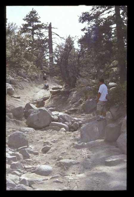 john bull trail san bernadino california